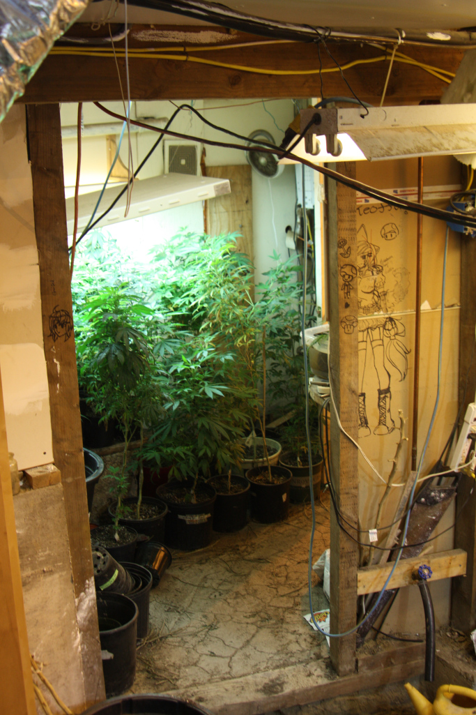 This home grow and hash oil labs in Puyallup,WA, was discovered when a girl served hash brownies to other HS students who got sick Above AP Photo/JenniferLinsley420Denver, 2013