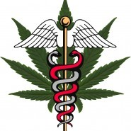 The State of the Research: Medical Marijuana