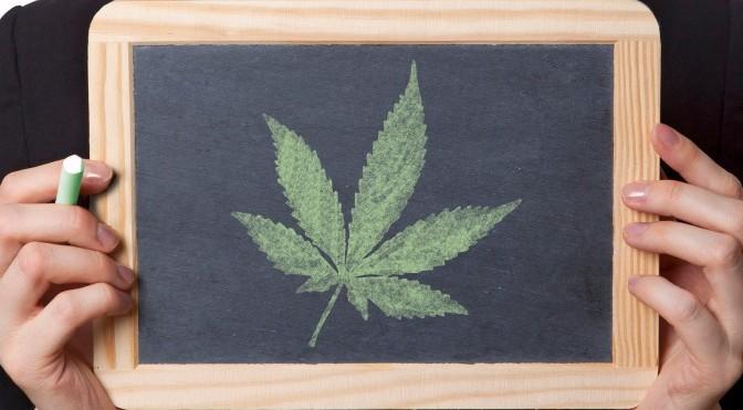 Marijuana Competes with High School in Colorado