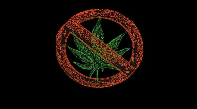 California Activists Rise up Against Marijuana Ballot