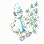 marijuana truths