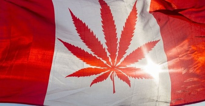 Canadians: Learn the Truth About Marijuana Dangers