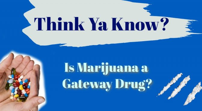 Is Marijuana A Gateway Drug?