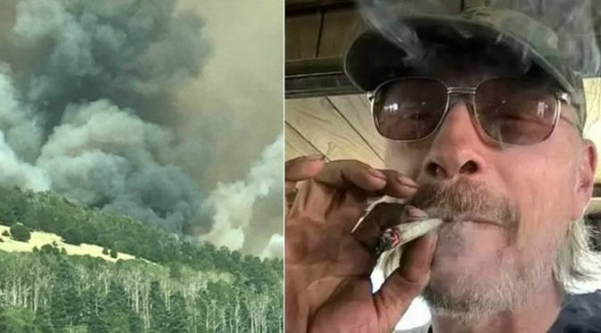 Is marijuana a direct factor in some of the wildfires?