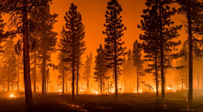 Do marijuana grows lead to fires and global warming?