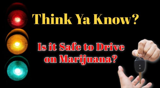 Think ya Know Is it Safe to Drive on Marijuana?